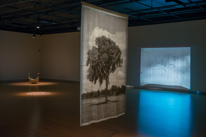 L'ombre et la forme, Installation view, Maison des arts de Laval 2014